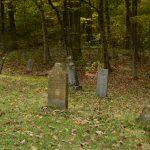 Morbid Curiosity: Let's Talk About It